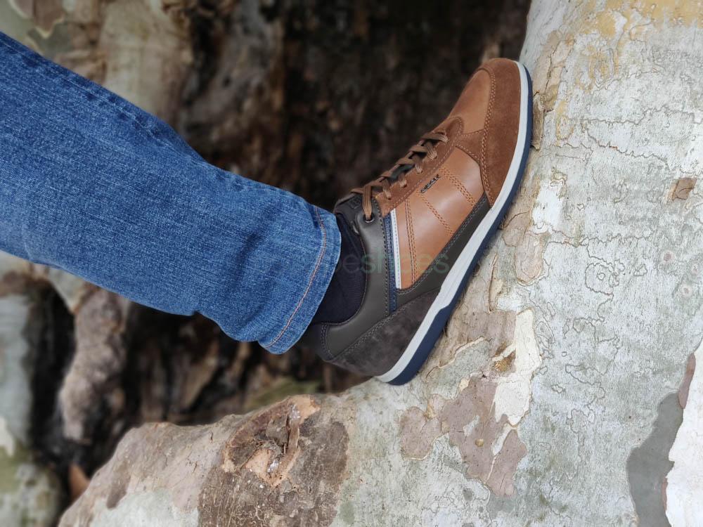 Sneakers GEOX Renan Brown