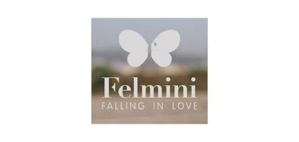 Nueva colección 2015 de Felmini – Amor a primera vista