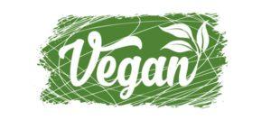 comprar calçado vegan