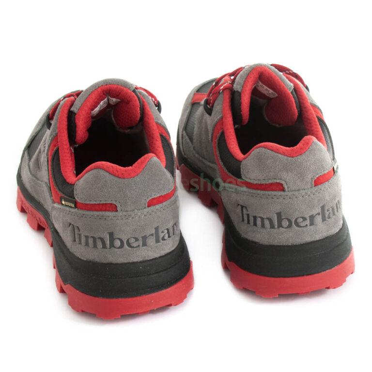 Sneakers TIMBERLAND Trail Trekker Low GTX Graphite A27M8